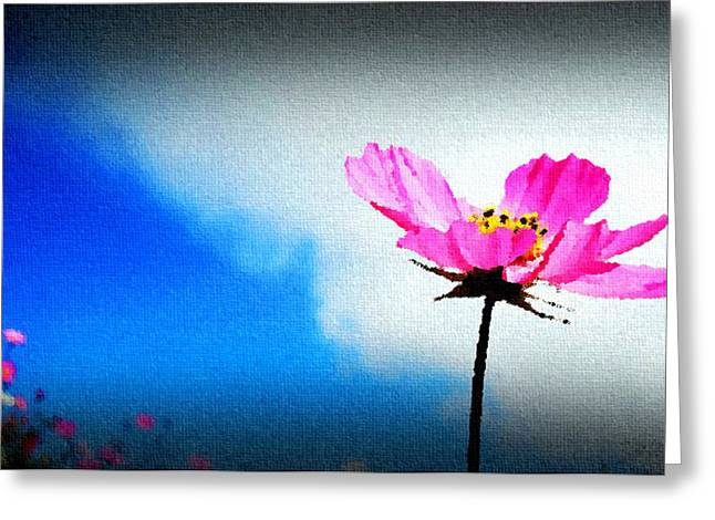 Flower And Sky Greeting Card