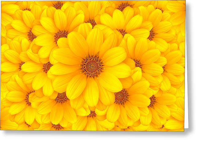 Flower Background Greeting Card by Carlos Caetano