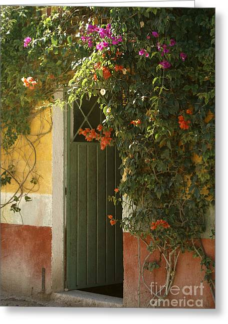 Greeting Card featuring the photograph Flower Bedecked Doorway Mineral De Pozos Mexico by John  Mitchell