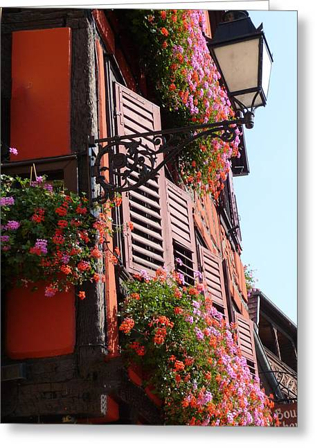 Flower Boxes And Shutters In Alsace Greeting Card by Christopher Mullard