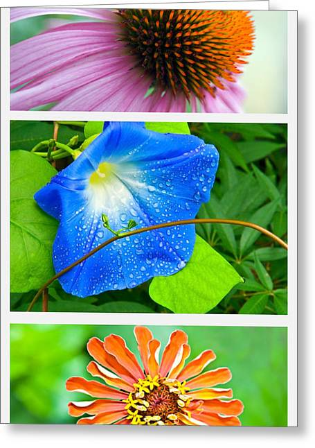 Flower Collage Part Two Greeting Card by Susan Leggett