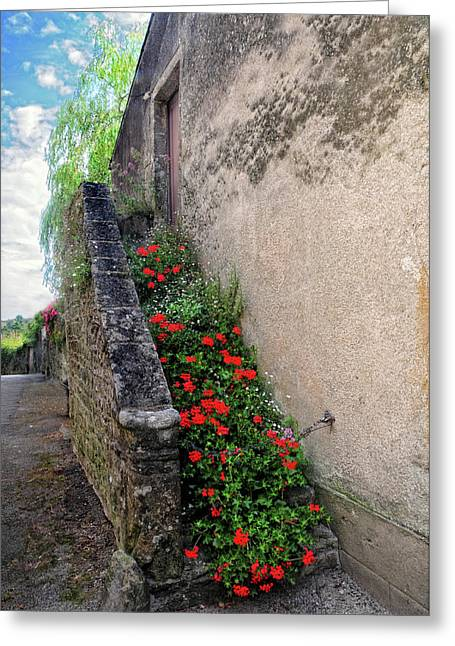 Greeting Card featuring the photograph Flower Stairway by Dave Mills