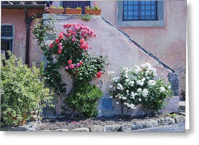 Flowers Growing On Side Of House Stairs Greeting Card by Jeremy Woodhouse