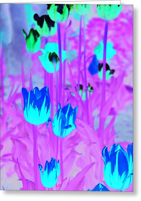 Greeting Card featuring the photograph Flowers by Josef Pittner