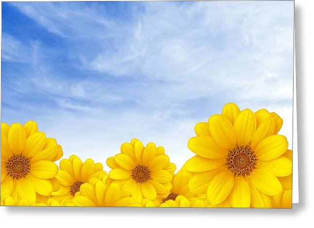 Flowers Over Sky Greeting Card by Carlos Caetano