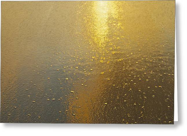 Flowing Gold 7646 Greeting Card by Michael Peychich