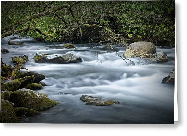 Flowing Stream In The Smokey Mountains No.312 Greeting Card