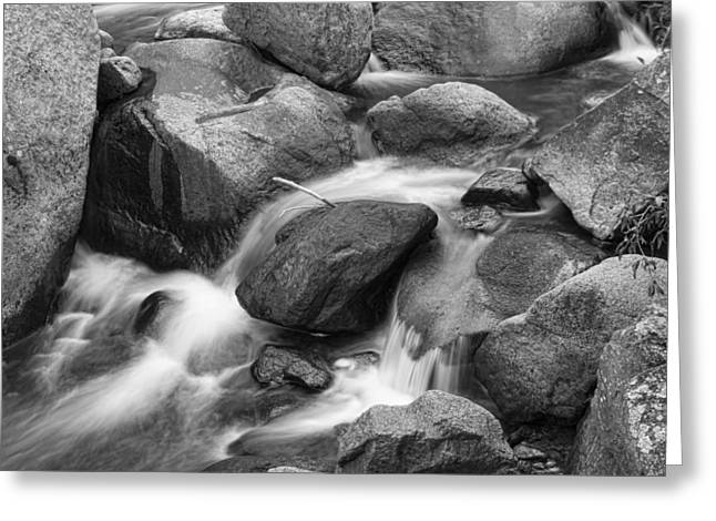 Flowing Water Down The Colorado St Vrain River Bw Greeting Card by James BO  Insogna