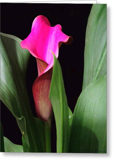 Fluent Calla Lily Greeting Card by Debra     Vatalaro