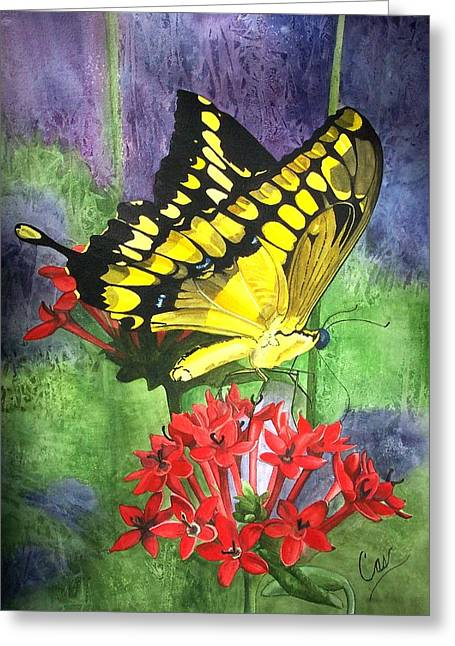 Flutter-by Greeting Card by Karen Casciani