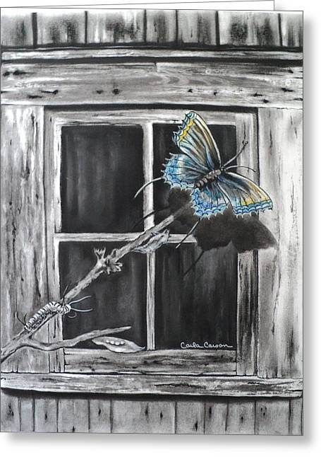 Fly Away Free Greeting Card by Carla Carson
