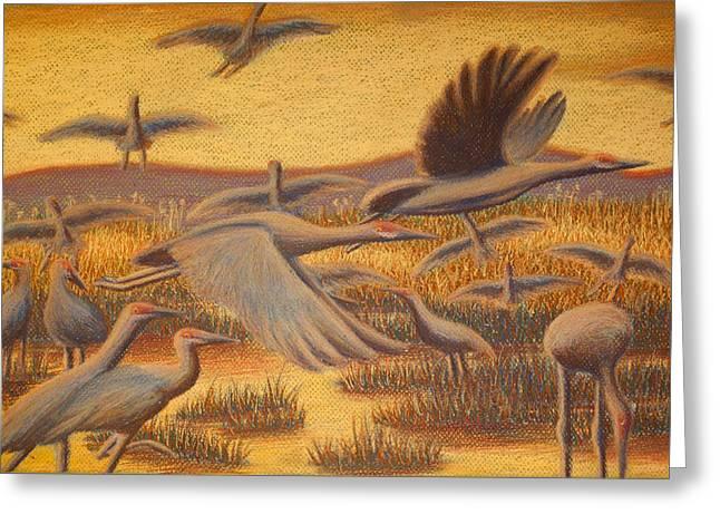 Fly Away Greeting Card by Thomas Maynard
