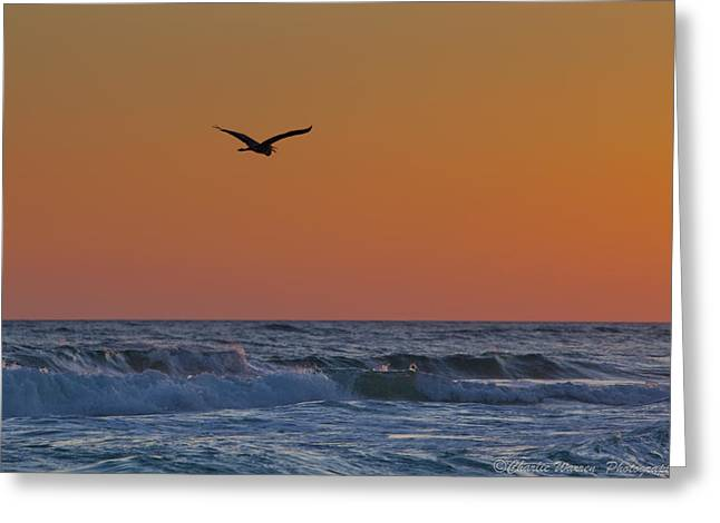 Fly By Greeting Card by Charles Warren