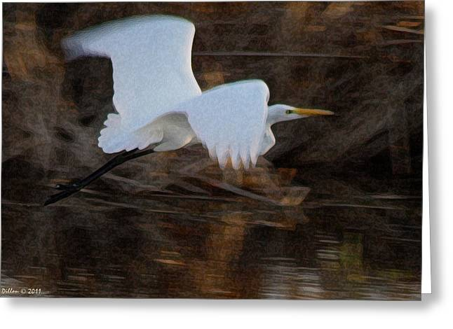Flying Low  Greeting Card
