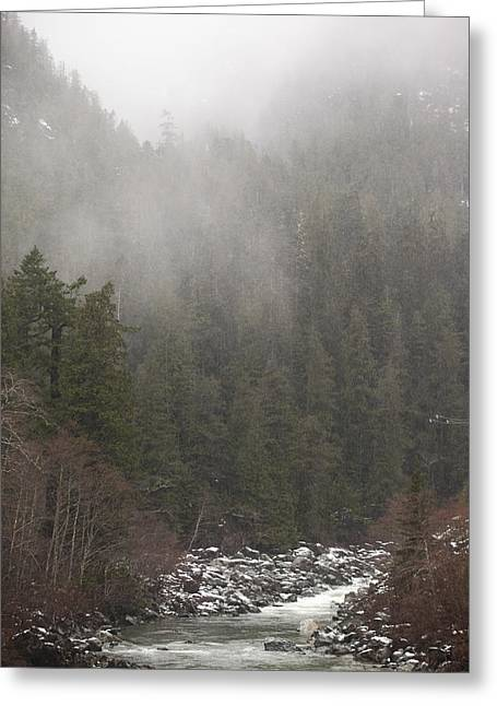 Fog And Mist In The Mountains Greeting Card by Taylor S. Kennedy