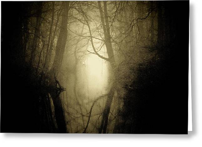Fog At Stream Greeting Card by Michael L Kimble