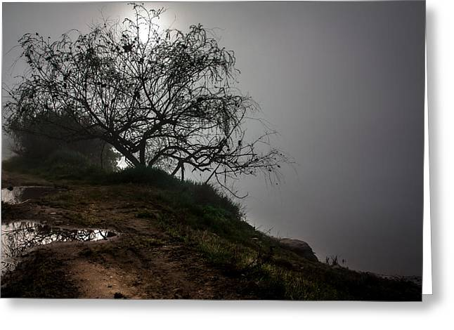 Greeting Card featuring the photograph Fog Day by Edgar Laureano