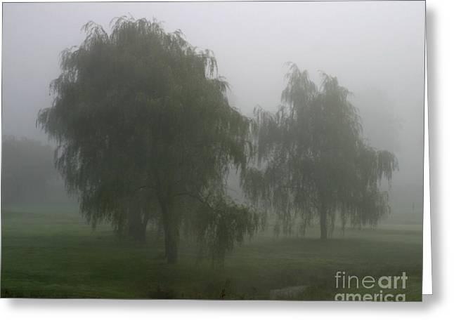 Fog II Greeting Card