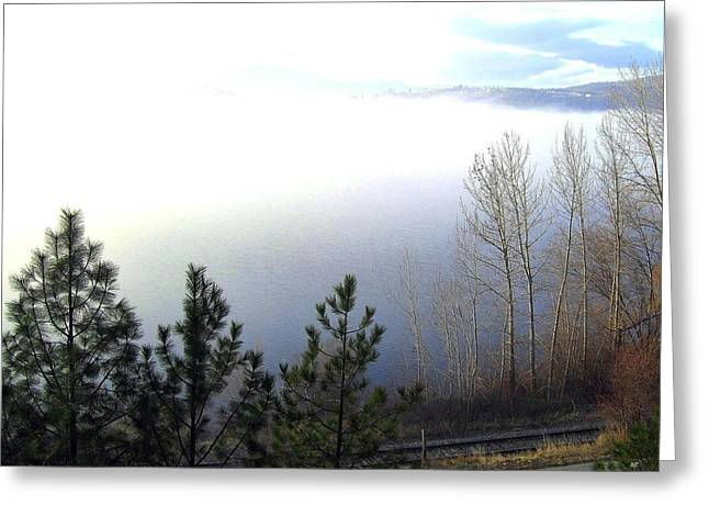 Fog On Wood Lake Greeting Card by Will Borden