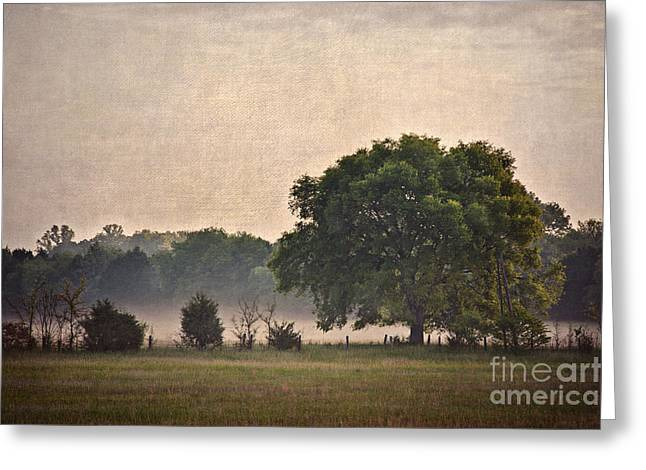 Greeting Card featuring the photograph Foggy Country Morning by Cheryl Davis