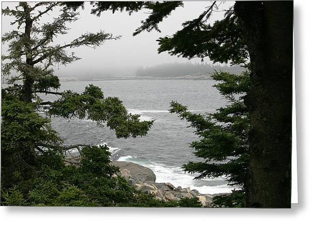 Foggy Day In Maine Greeting Card by Jeanne Andrews
