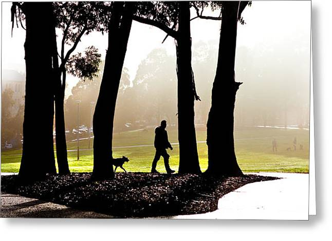 Foggy Day To Walk The Dog Greeting Card by Harry Neelam
