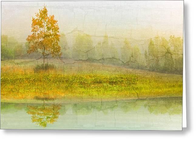 Foggy Meadow Greeting Card by Debra and Dave Vanderlaan
