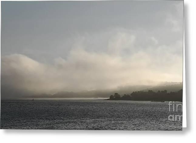 Foggy Morning Greyscale Greeting Card by Lutz Baar