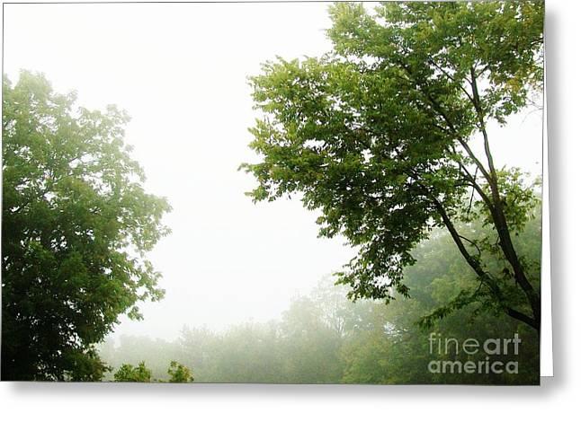 Foggy Morning Greeting Card by Marsha Heiken