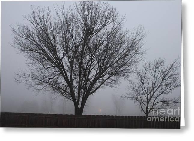 Foggy Morning Greeting Card