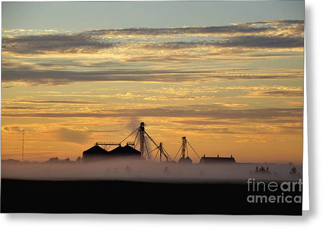 Foggy Morning Greeting Card by Tamera James