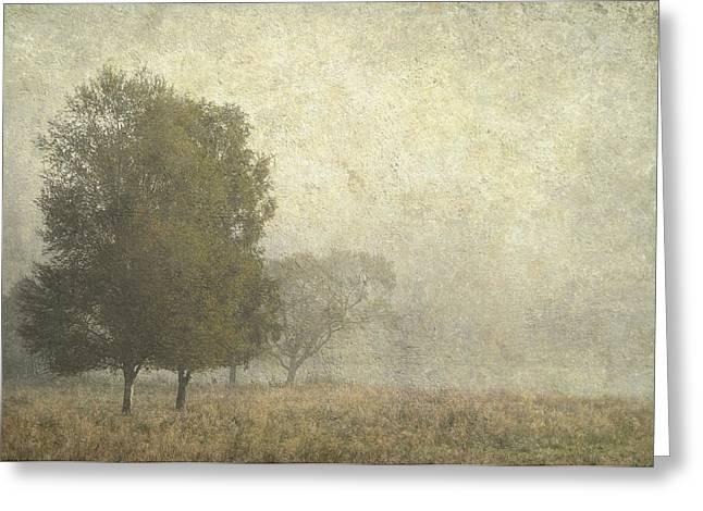 Foggy Morning. Trossachs National Park. Scotland Greeting Card by Jenny Rainbow