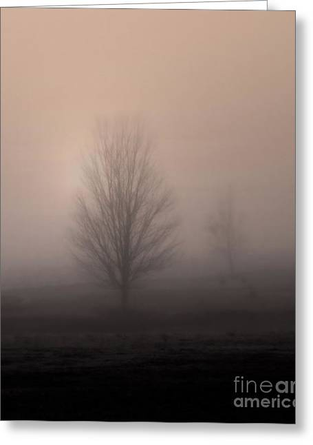 Greeting Card featuring the photograph Foggy Pasture by Deborah Smith