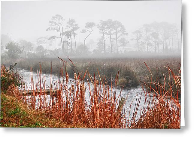 Foggy Waterville Marsh Greeting Card by Michael Thomas