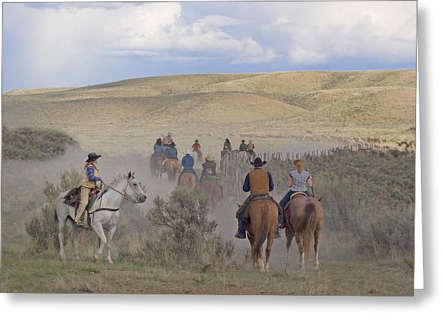 Following The Herd Greeting Card by Judy Deist