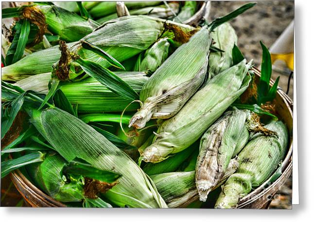 Food - Ears Of Corn Greeting Card by Paul Ward