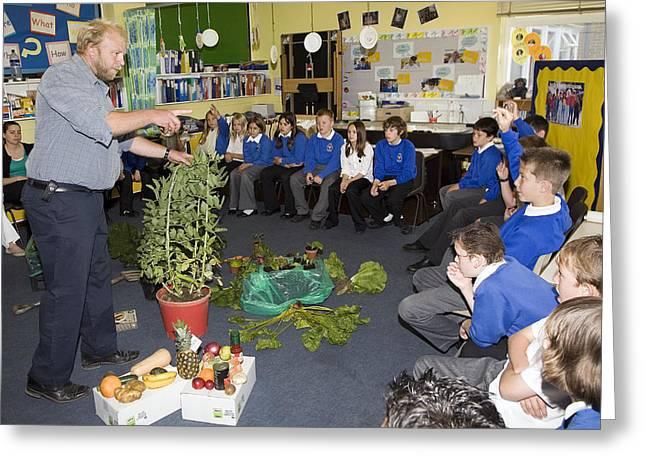 Food Growing Demonstration In School Greeting Card by Paul Rapson