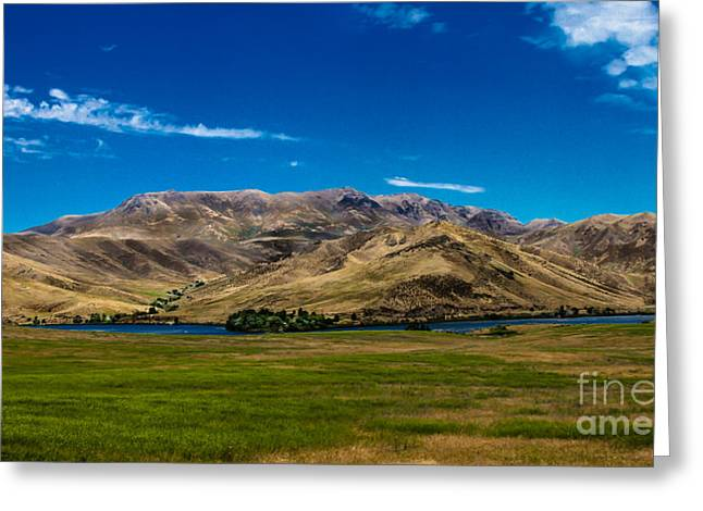 Foothills Greeting Card by Robert Bales