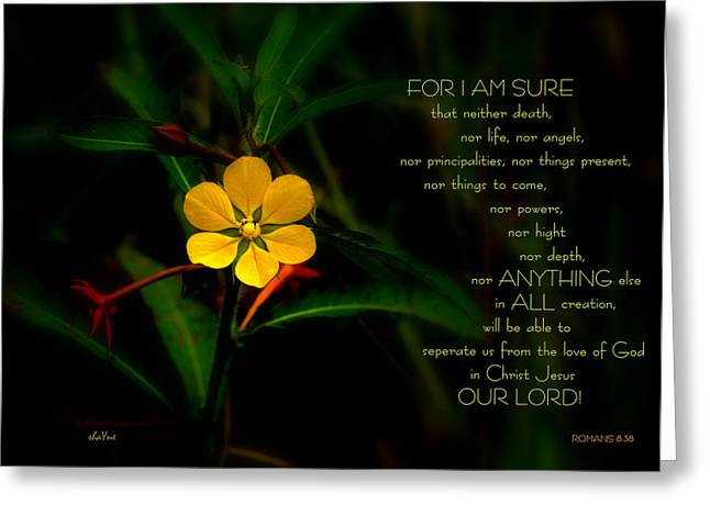 For I Am Sure Greeting Card by Shayne Johnson Fleming