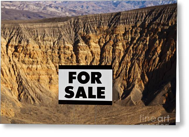 For Sale Sign In Desert Landscape Greeting Card by David Buffington