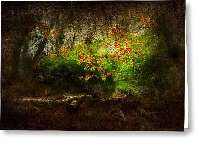 Forbidden Woods Greeting Card by Svetlana Sewell