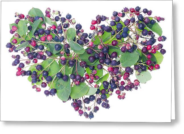 Forest Berries Heart Greeting Card by Aleksandr Volkov