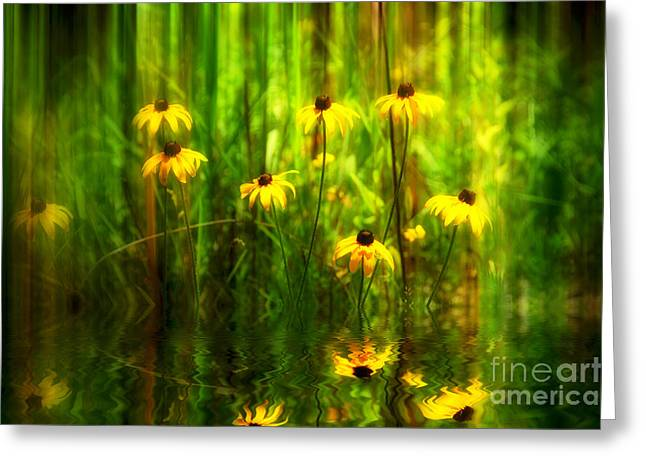 Forest Edge Greeting Card by Elaine Manley