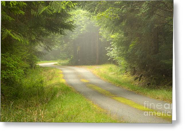 Forest Portal Greeting Card by Idaho Scenic Images Linda Lantzy