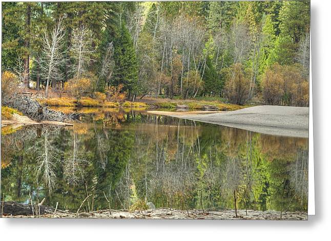 Forest Reflection-merced River Greeting Card by Ron Schwager