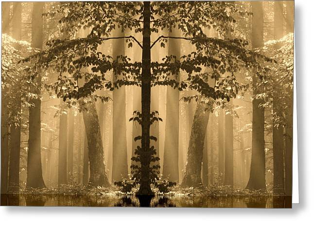 Greeting Card featuring the photograph Forest Reflection by Odon Czintos
