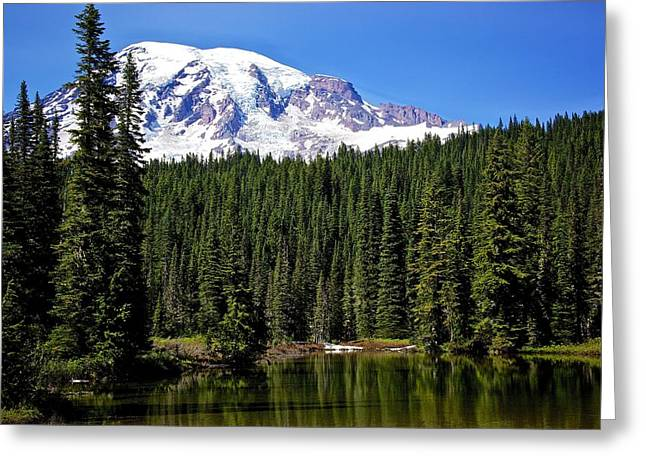 Greeting Card featuring the photograph Forest Reflections by Joe Urbz