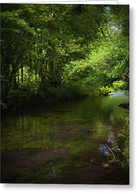 Forest River Greeting Card by Svetlana Sewell