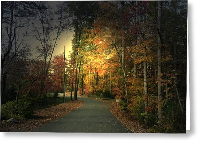 Forest Road 2 Greeting Card by Elizabeth Coats