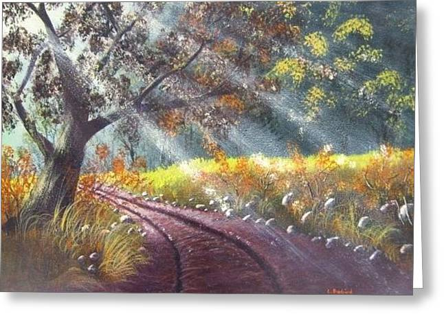 Forest Sunbeams Greeting Card